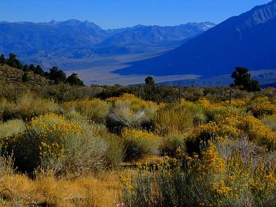 Kings Canyon National Park, Rt. 395, California